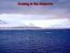 Cruising-in-The-Antarctic-1