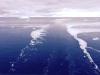 Cruising-in-The-Antarctic-2