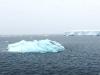 Ice-&-Icebergs2
